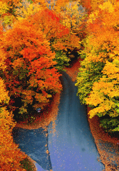 Autumn Glory, New Hampshire