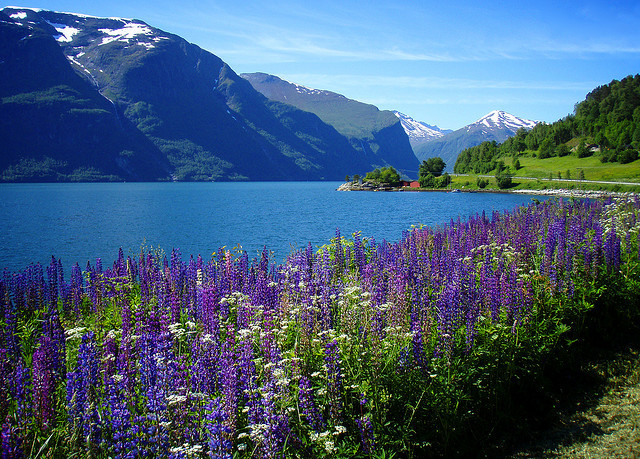 by Krogen on Flickr.Amazing view from Romsdalsfjord, the ninth longest fjord in Norway.