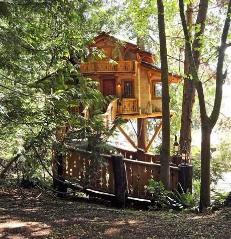 Tree House, Seattle, Washington