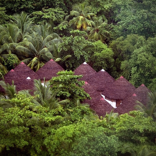 Of Huts and Coconuts, in the tropical forests of Madagascar
