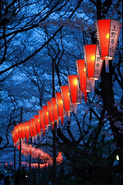 Lantern Festival, Sakura, Japan