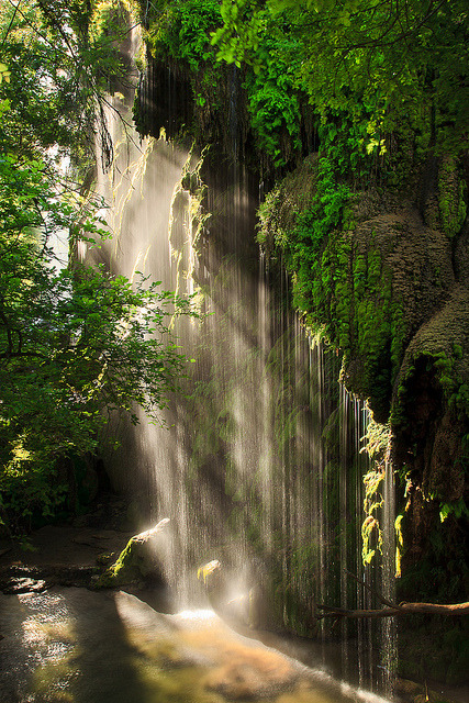 Morning light at Gorman Falls, Texas, USA