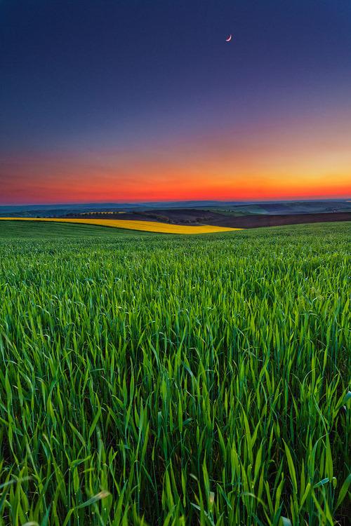 Sunset Field, Bulgaria