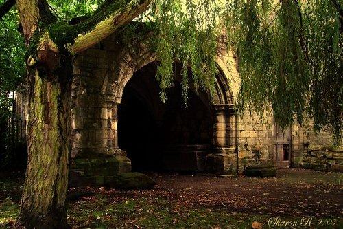 Forest Portal, York, England