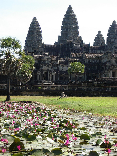 Pond filled with water lilies in Angkor Wat, Cambodia