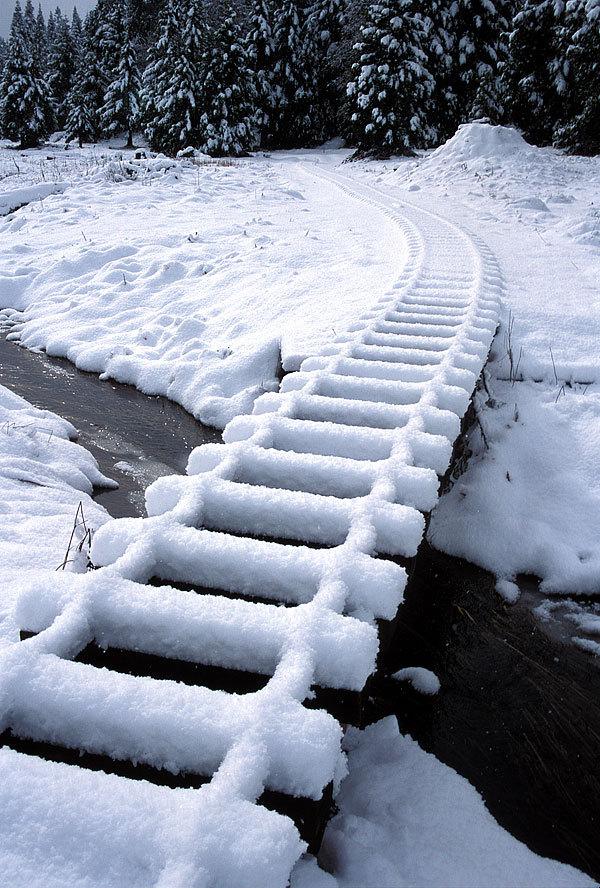 Snow Trestle, Leoni Meadows, California
