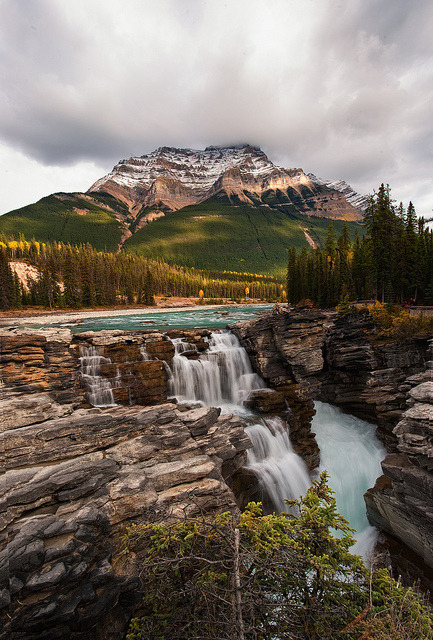 Athabasca Falls in Jasper National Park / Canada