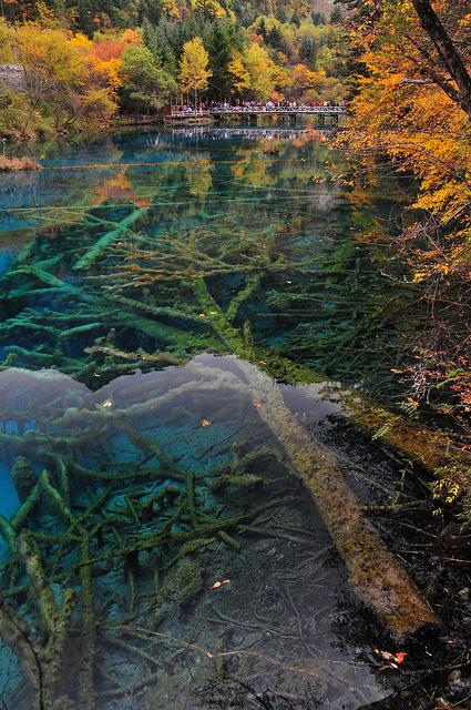 Five-Flower Lake in Jiuzhaigou Valley, Sichuan / China