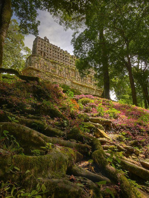 Hidden in the jungle, the mayan ruins of Yaxchilan, Chiapas / Mexico