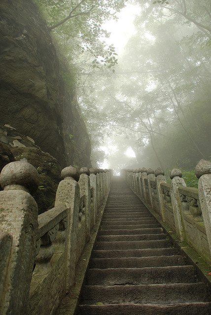 Steps in the mist, Wudang Shan / China