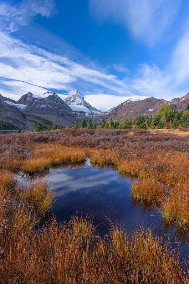 Mt. Assiniboine Provincial Park, British Columbia / Canada