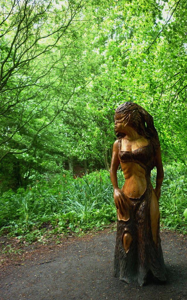 Hamadryad at Hardwick Park, Sedgefield / England